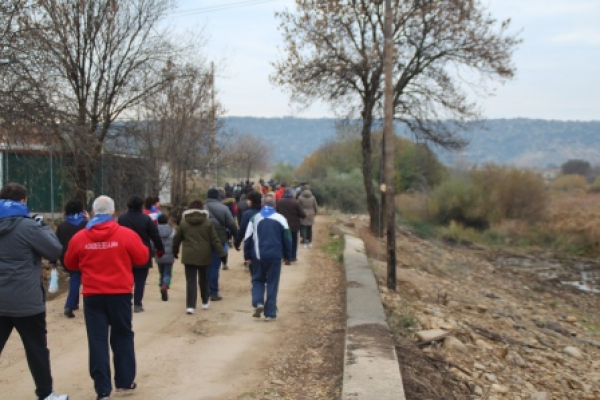 fp17-paseo-molinoriscal-19611A805A-2377-DBE3-CE16-AA1A040E189B.jpg