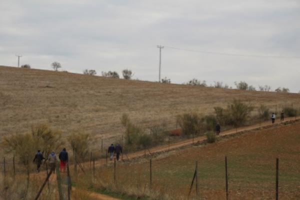 fp17-paseo-molinoriscal-3871118860-A678-05A3-09A8-4D0F53991FD2.jpg