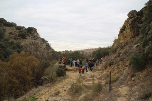 fp17-paseo-molinoriscal-7858CC987C-BAC1-5227-8AD6-96693CE5FB43.jpg