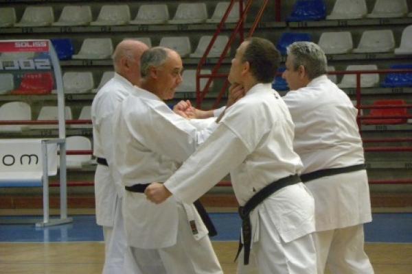 180525-entrenamiento-karate-037D75881A-6394-7B67-A286-C02252861E83.jpg
