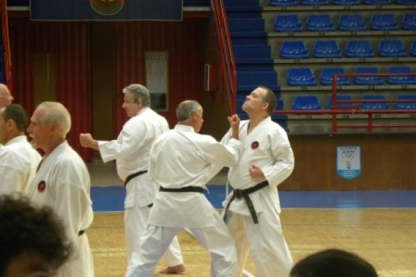 180525-entrenamiento-karate-0439463E78-61AF-68EE-AD10-3940E239A045.jpg