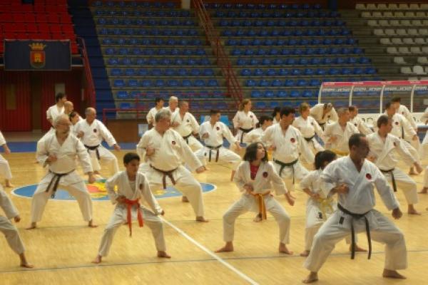 180525-entrenamiento-karate-1001F88712-AE2E-E749-C11C-922EED9C6B39.jpg