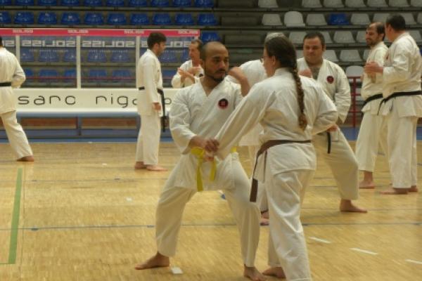 180525-entrenamiento-karate-1539F9491A-3684-478B-6EDD-4937D3B839C4.jpg