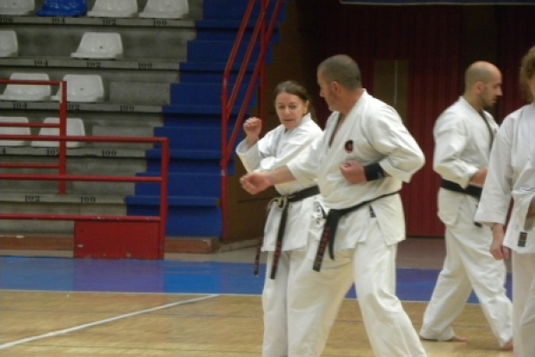 180525-entrenamiento-karate-18ADA2FFE6-9945-D53E-21FA-9BBF43654598.jpg