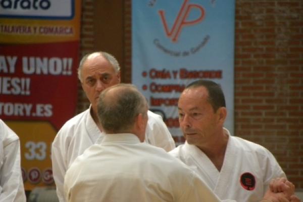 180525-entrenamiento-karate-24D8F91EB7-20DA-6692-D2E8-D8EC4CF647FC.jpg