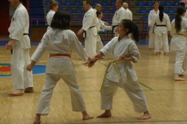 180525-entrenamiento-karate-35338EEF54-206D-3A2A-8AA9-D451A748B86C.jpg